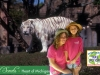 Girl Scout Photos: Look At the Tiger